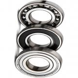 NACHI Long-Life 6903-2nse 6904-2nse 6905-2nse Deep Groove Ball Bearing for Electric Appliance